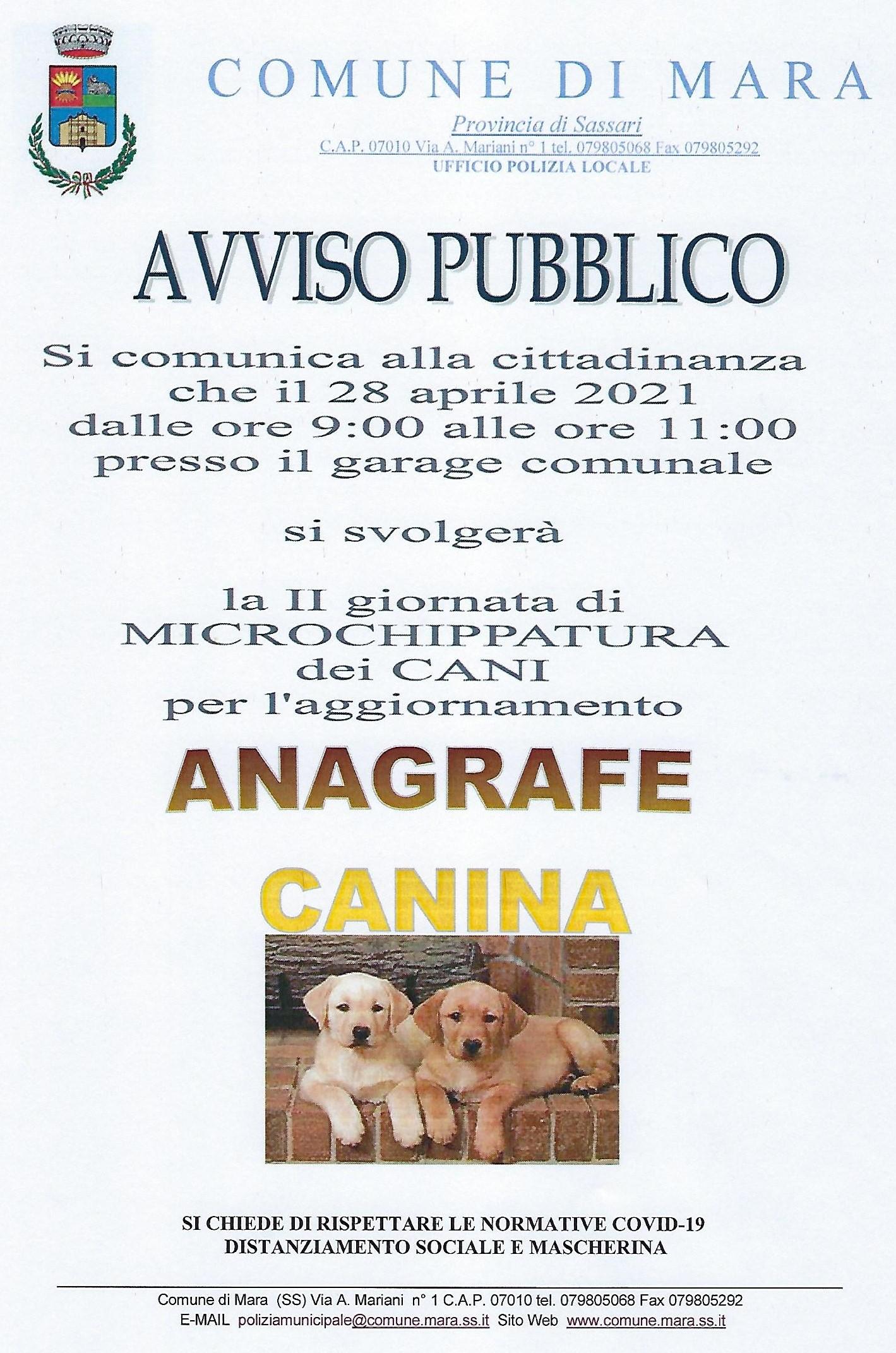 II GIORNATA DI MICROCHIPAZIONE ANAGRAFE CANINA