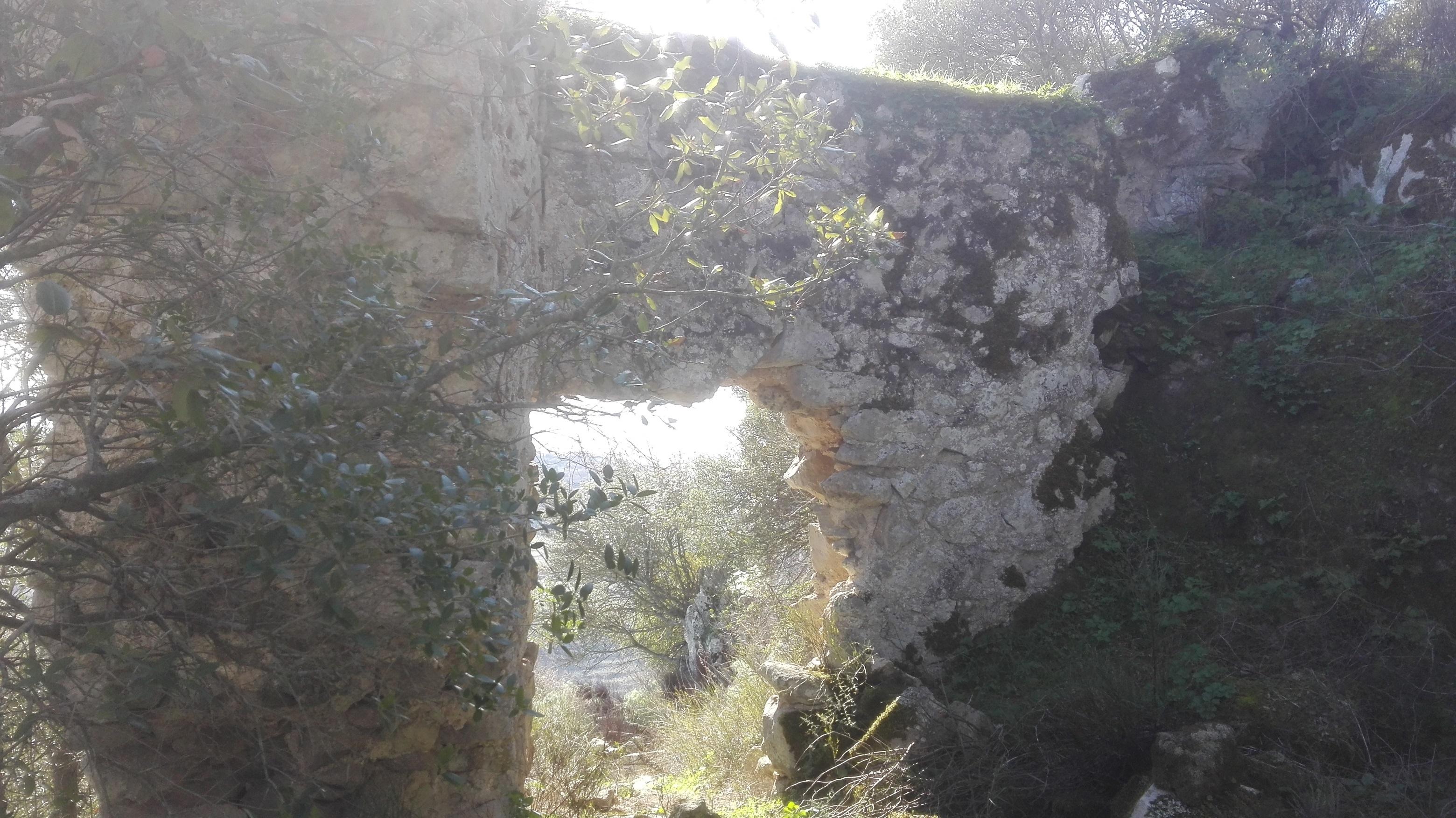 immagine 8 galleria